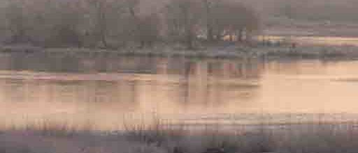 Loire at Chouzy – pan east : 12 Months-12 Minute Film