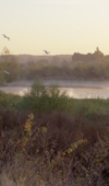 Loire River, Chouzy East